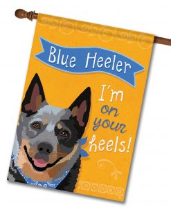 Blue Heeler- House Flag - 28'' x 40''
