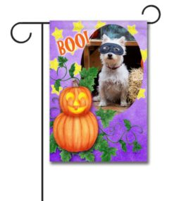Boo! Jack O' Lantern- Photo Garden Flag - 12.5'' x 18''