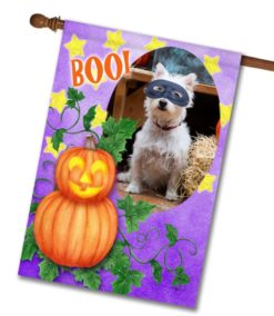 "Boo! Jack O' Lantern - Photo House Flag 28""x40"""