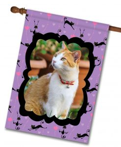 "Cats & Hearts - Photo House Flag 28""x40"""