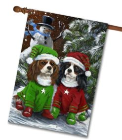 Cavalier King Charles Snow- House Flag - 28'' x 40''