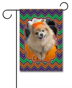 Halloween Chevron- Photo Garden Flag - 12.5'' x 18''