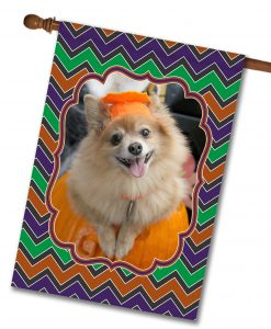 "Halloween Chevron  - Photo House Flag 28""x40"""