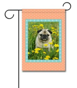 Peachy Keen - Photo Garden Flag - 12.5'' x 18''