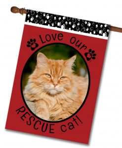 "Rescue Cat Red  - Photo House Flag 28""x40"""