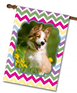 "Spring Chevron  - Photo House Flag 28"" x 40"""