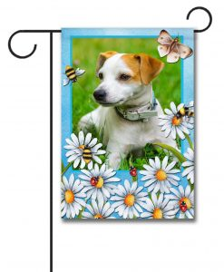 Summer Daisies - Photo Garden Flag - 12.5'' x 18''