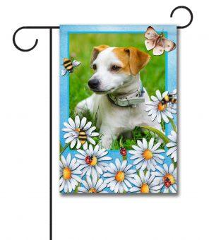 Summer Daisies - Photo Garden Flag - 12.5'' x 18''