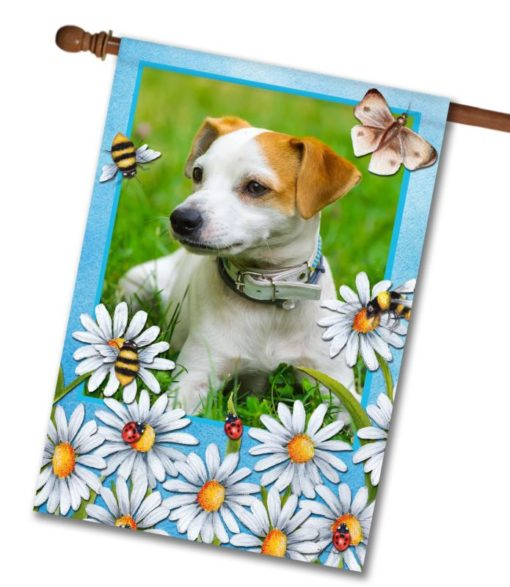 "Summer Daisies  - Photo House Flag 28""x40"""