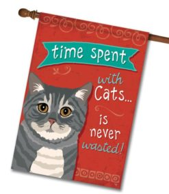 Time Spent with Cats Gray Tabby Cat- House Flag - 28'' x 40''