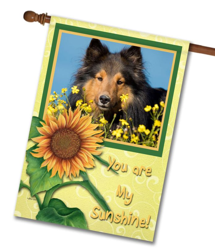 "You Are My Sunshine  - Photo House Flag 28""x40"""
