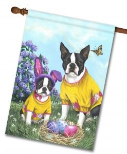 Boston Terrier Easter Bunny – HOUSE