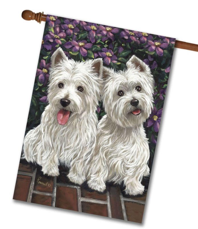 west highland terrier molly glennie - house flag - 28 u0026 39  u0026 39  x 40 u0026 39  u0026 39