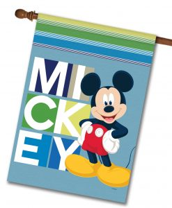 Blocks Mickey Mouse House Flag