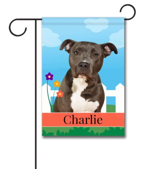 Personalized Spring Black and White American Staffordshire Terrier - Garden Flag - 12.5'' x 18''