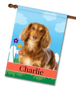 Personalized Spring Brown Long Haired Dachshund - House Flag - 28'' x 40''