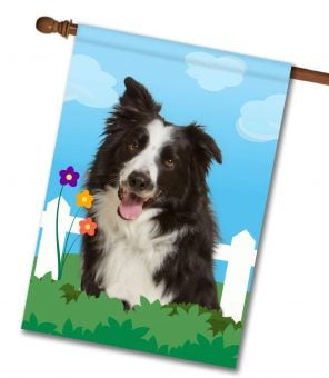 Spring Border Collie House Flag