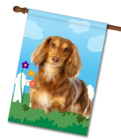 Spring Brown Long Haired Dachshund - House Flag - 28'' x 40''