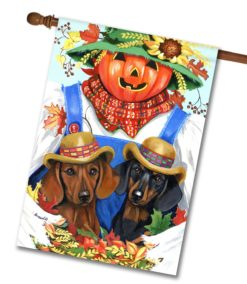 Fall Doxie House Flag